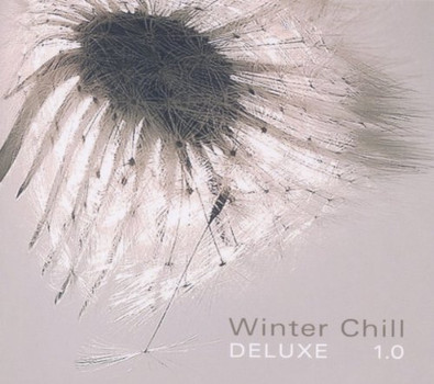 Various - Winter Chill Deluxe 1.0