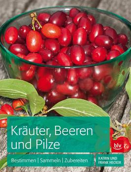 Kräuter, Beeren und Pilze: Bestimmen Sammeln Zubereiten - Hecker, Frank