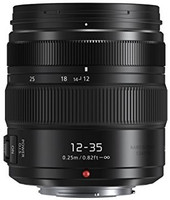 Panasonic Lumix G X VARIO 12-35 mm F2.8 ASPH. POWER O.I.S. 58 mm Obiettivo (compatible con Micro Four Thirds) nero