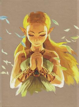 The Legend of Zelda: Breath of the Wild - Das offizielle Buch [Erweiterte Edition, Gebundene Ausgabe]