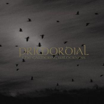 Primordial - The Gathering Wilderness ( CD + DVD)