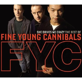 Fine Young Cannibals - She Drives Me Crazy-The Best of