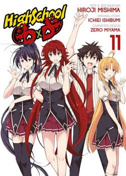 HighSchool DxD. Bd. 11 - Ichiei Ishibumi  [Taschenbuch]