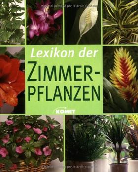 Lexikon Der Zimmerpflanzen Die Schonsten Zimmerpflanzen Von A Bis Z