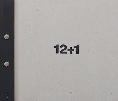 12+1. 12+1 Jahre im Faulerbad [Gebundene Ausgabe]