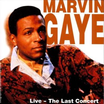 Marvin Gaye - Live-the Last Concert