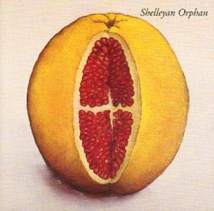 Shelleyan Orphan - Humroot
