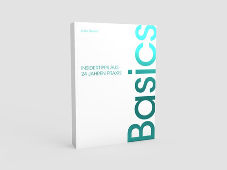 Basics. Insidertipps aus 24 Jahren Praxis - Gabi Steiner  [Taschenbuch]