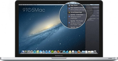 "Apple MacBook Pro CTO 13.3"" (Écran Retina) 2.9 GHz Intel Core i5 8 Go RAM 768 Go SSD [Mi-2012, Clavier anglais, QWERTY]"