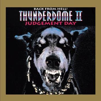 Various - Thunderdome Vol.2