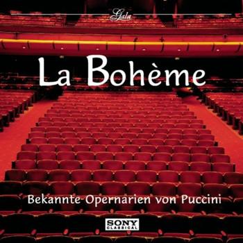 Placido Domingo - La Boheme