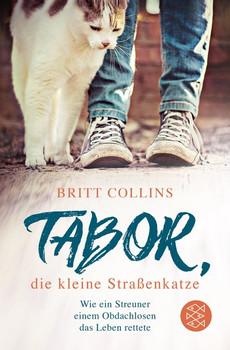 Tabor, die kleine Straßenkatze - Britt Collins  [Taschenbuch]