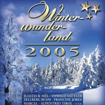 Various - Winterwunderland 2005