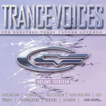 Various - Trance Voices Vol.13