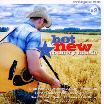 Various - Hot & New Country Music Vol.2