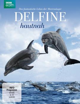 Delfine hautnah