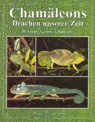 Chamäleons: Drachen unserer Zeit - W. Schmidt
