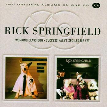 Rick Springfield - Success Hasn'T Spoiled