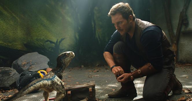 Jurassic World: Das gefallene Königreich [2 DVDs, Special Edition]