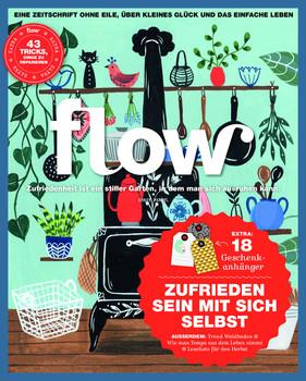 Flow Nummer 37 [Taschenbuch]