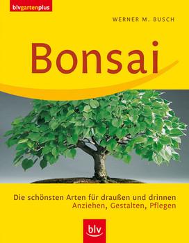 Bonsai: Die schönsten Arten für draußen und drinnen. Anziehen, Gestalten, Pflegen - Werner M. Busch