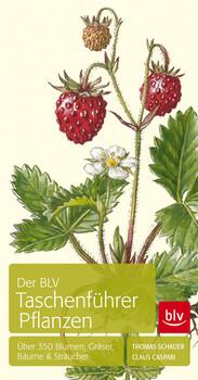 Der BLV Taschenführer Pflanzen: Über 350 Blumen, Gräser, Bäume & Sträucher - Caspari, Claus