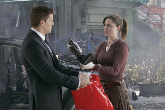 Bones: The Complete Tenth Season [6 DVDs, UK Import]