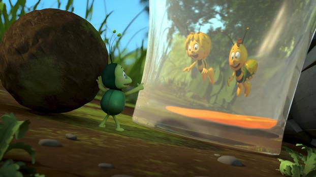 Die Biene Maja 15: Ein Salto für die Freundschaft
