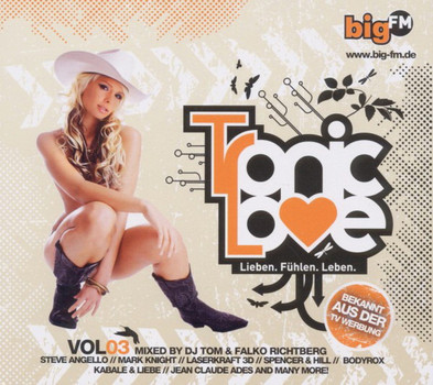 Various - Big FM-Tronic Love Vol.3