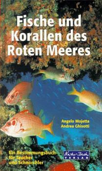 Fische und Korallen des Roten Meeres. Ein Bestimmungsbuch für Taucher und Schnorchler - Angelo Mojetta