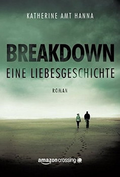 Breakdown – Eine Liebesgeschichte - Katherine Amt Hanna  [Taschenbuch]