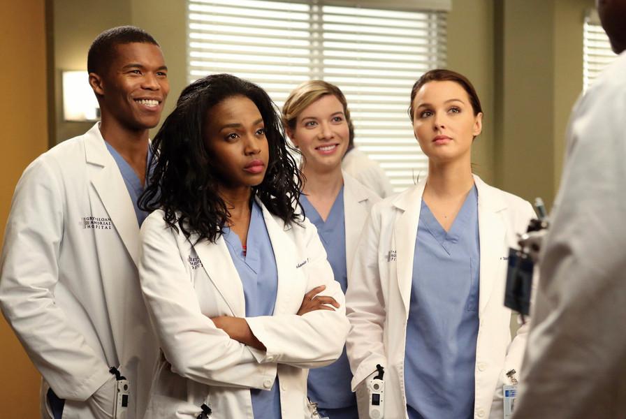 Grey\'s Anatomy - Staffel 10 [6 DVDs] gebraucht kaufen