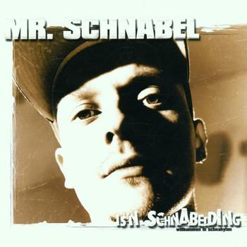 Mr.Schnabel - Is'n Schnabelding - Willkommen in Schnabylon