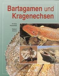 Bartagamen und Kragenechsen - Hubert Bosch