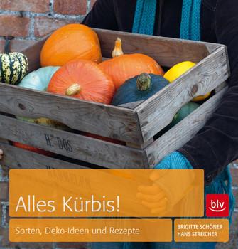 Alles Kürbis Sorten Deko Ideen Und Rezepte Brigitte Schöner