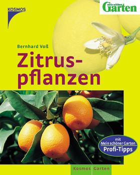 Zitruspflanzen - Bernhard Voß