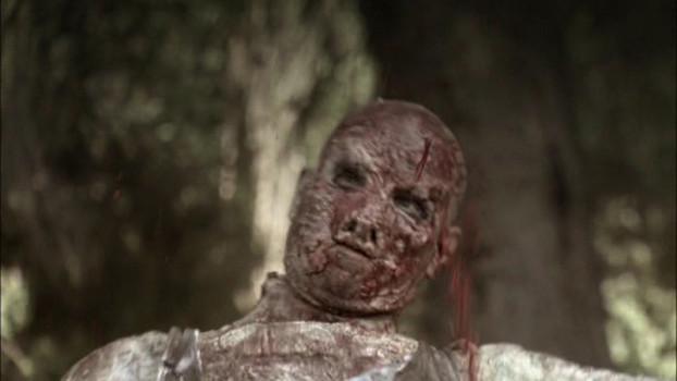 Zombie Virus - Planet der Toten