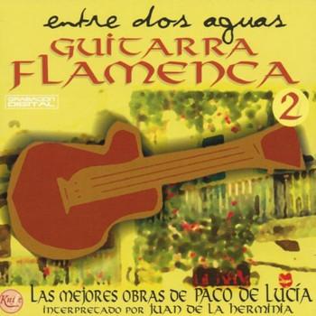 Paco de Lucia - Guitarra Flamenca