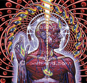 Tool - Lateralus