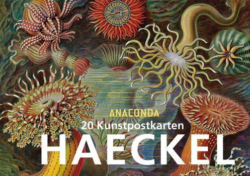 Postkartenbuch Ernst Haeckel - Ernst Haeckel  [Taschenbuch]