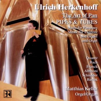 U. Herkenhoff - Pipes And Tubes (Musik für Panflöte und Orgel)