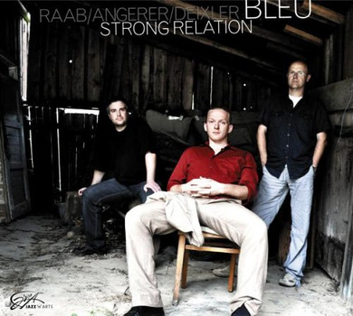 Bleu (Raab/Angerer/Deixler) - Strong Relation