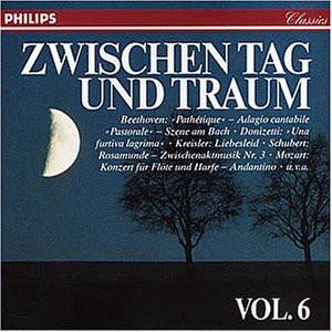 Various - Zwischen Tag und Traum Vol. 6