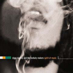 Ziggy Marley - Spirit of Music