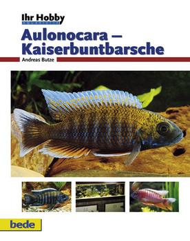 Aulonocara - Kaiserbuntbarsche, Ihr Hobby - Andreas Butze