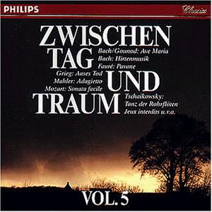 Various - Zwischen Tag und Traum Vol. 5