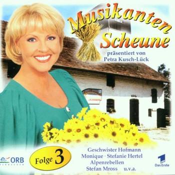 Various - Musikantenscheune Vol.3