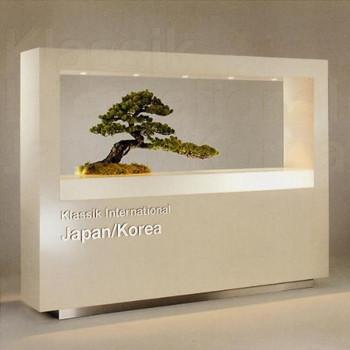 Various - Klassik Int.: Japan & Korea