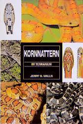 Kornnattern im Terrarium - Jerry G. Walls