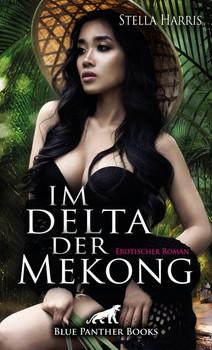 Im Delta der Mekong | Erotischer Roman. Sie ist jung, anschmiegsam und willig, einem Mann in jeder Form zu verwöhnen ... - Stella Harris  [Taschenbuch]
